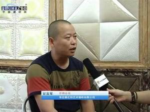 德亿特艺术墙砖营销总监 甘言军